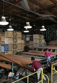 Grading dried lumber at J. Gibson McIlvain Company
